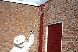 Ongediertebestrijder van Vermin Contro,bezig met wespenbestrijding